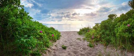 美しい空とラヘマー自然公園の海岸の風景
