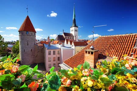 Old Tallinn in summer