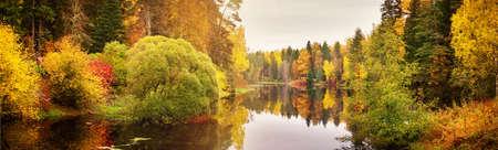 Arbres sur le terrain en automne Banque d'images - 87870252