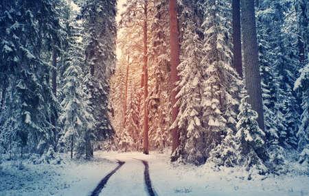 Straße im verschneiten Winter am schönen sonnigen Tag Standard-Bild - 92181776