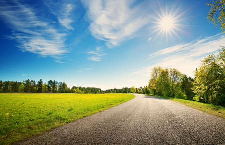 asphalt road panorama in countryside on sunny spring day.. Route in beautiful nature landscape with sun, blue sky, green grass and dandelions