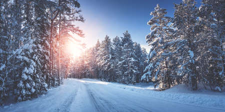 road in snowy winter on beautiful sunny day