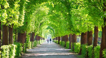 Beautiful park around Schonbrunn palace in Vienna, Austria Stock Photo