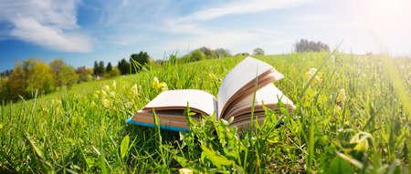 Open boek in het gras op het veld Stockfoto