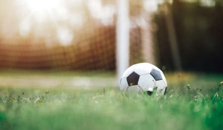 Black and whithe ball lying on green grass