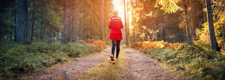 Young woman walking in the autumnal forest in sunrise. Banque d'images