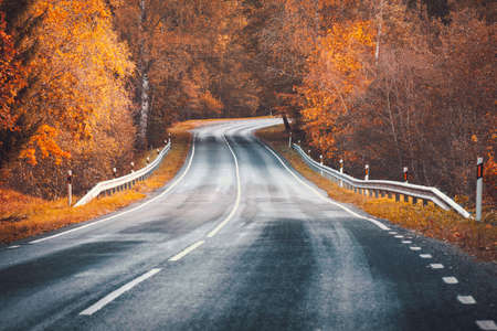 Beautiful curve highway with dividing line and autumnal trees on the both sides of it.