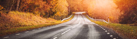 Beautiful panorama of the curve road and autumnal trees on the both sides of it.