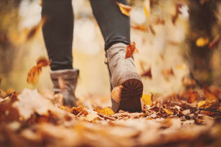 Woman walking alone in the autumnal park