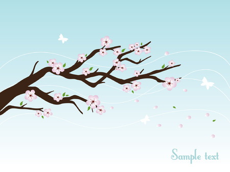 Cherry blossom tree illustration Vector