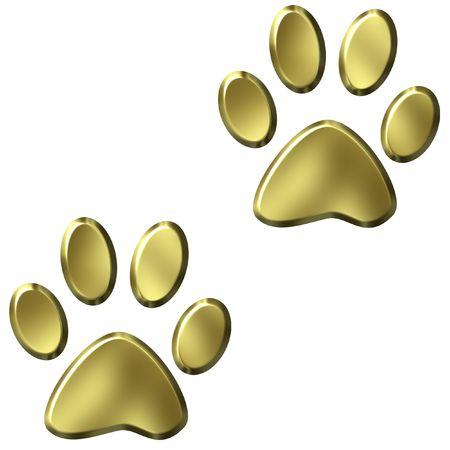 3d lion: Animal Foot Prints