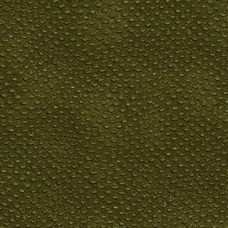 crocodile skin: Crocodile Skin Stock Photo
