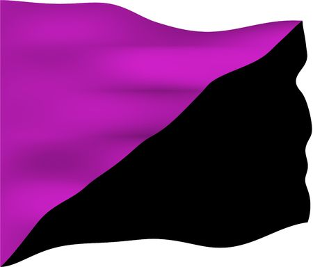 anarchism: Anarchist feminism flag. Unlike other bisected anarchist flags, it does not necessarily represent another form of anarchism, but is used to focus on opposition to the hierarchical patterns of sexism and patriarchy.