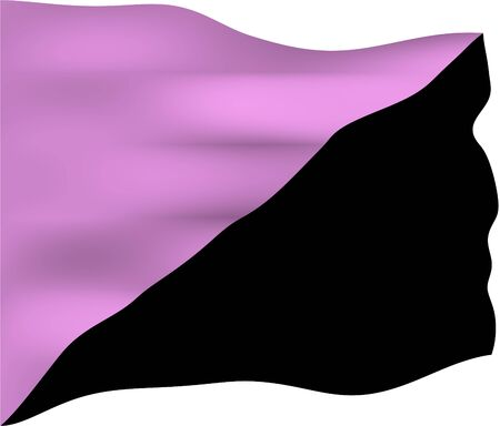 anarchism: Anarchist queer flag. Unlike other bisected anarchist flags, it does not necessarily represent another form of anarchism, but is used to focus on opposition to the hierarchical patterns of heterosexism and transphobia. Stock Photo