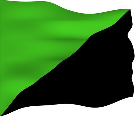 anarchism: Green anarchism flag used by social ecologists, green anarchists, anti-civilization anarchists and anarcho-primitivists. It is generally taken to symbolize a vision of anarchism that focuses on the self-determination of all forms of life and not just huma