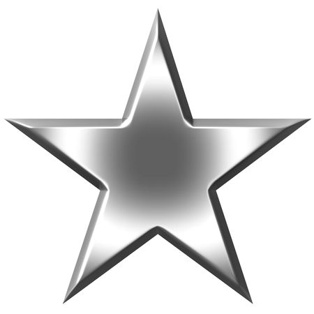 silver stars: 3d silver star
