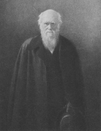 darwin: Charles Darwin on engraving from the 1800s. British naturalist and writer best known for his evolution theory. Editorial