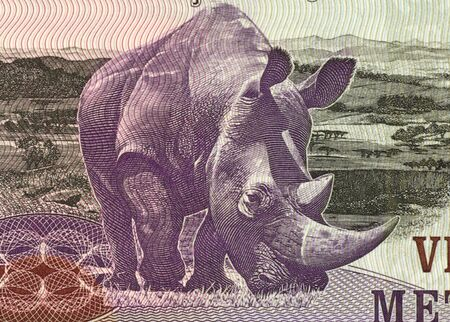 unc: Rhinoceros on 20 Meticais 2006 Banknote from Mozambique.
