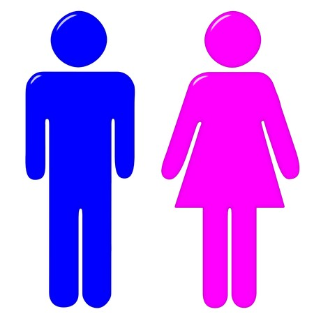 3d male and female silhouettes  photo