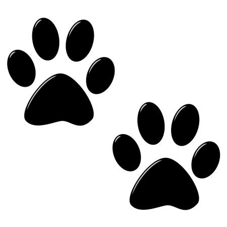 paw prints: 3d cat foot prints