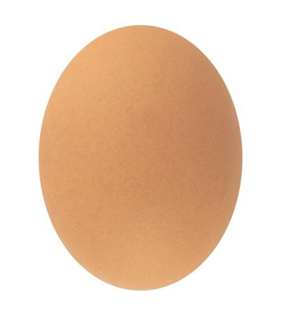 Egg  Stock Photo - 8486234