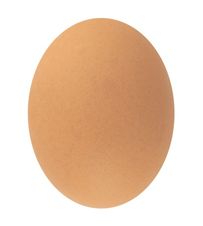 Egg Stock Photo - 8486234