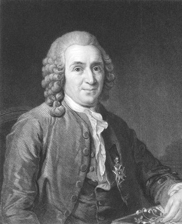as one: Carl Linnaeus (1707-1778) on engraving from the 1800s. Swedish botanist, physician, and zoologist, known as the Father of modern taxonomy, and also considered as one of the fathers of modern ecology. Engraved by C.E.Wagstaff and published in London by Cha