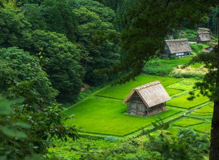 shirakawago: Historical Japanese Village - Shirakawago Stock Photo