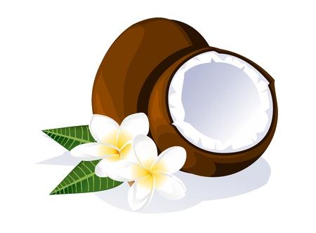 noix de coco: Noix de coco et plumeria