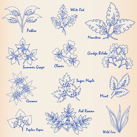 Drawn Hand Leaves Icon Set vector eps10