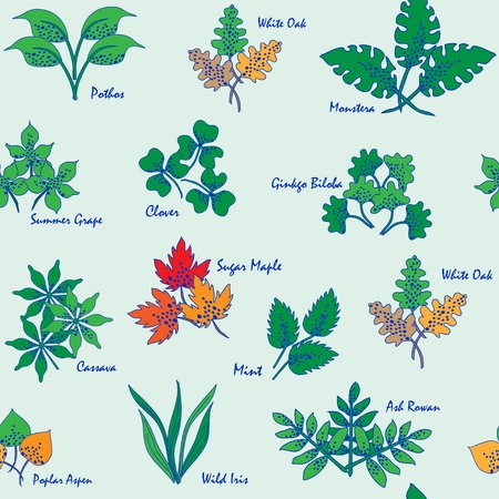 mint leaves: Hand Drawn Seamless Leaves Icons