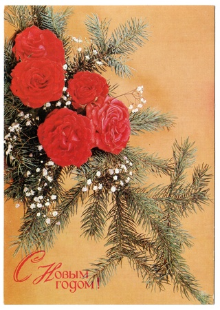 USSR - CIRCA 1990: Postcard shows draw by Artist Poklad - red rose with fir branches, circa 1990