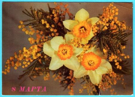 mimose: USSR - CIRCA 1989: Postcard, fotografo Dergileva - narcisi con mimose, circa 1989