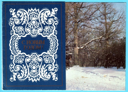 USSR - CIRCA 1980: Postcard printed in the USSR shows  - winter forest, circa 1980. Russian text: Happy New Year! Stock Photo - 13574885