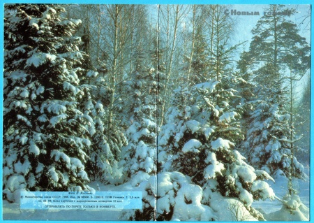 USSR - CIRCA 1980: Postcard printed in the USSR shows  - winter forest, circa 1980. Russian text: Happy New Year!