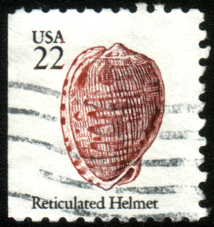 overprint: UNITED STATES OF AMERICA - CIRCA 1985: A stamp printed in the USA shows shell of Reticulated Helmet, circa 1985 Editorial