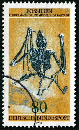 GERMANY - CIRCA 1978: A stamp printed in Germany shows fossils fledermaus - mine messel B. Darmstadt, circa 1978