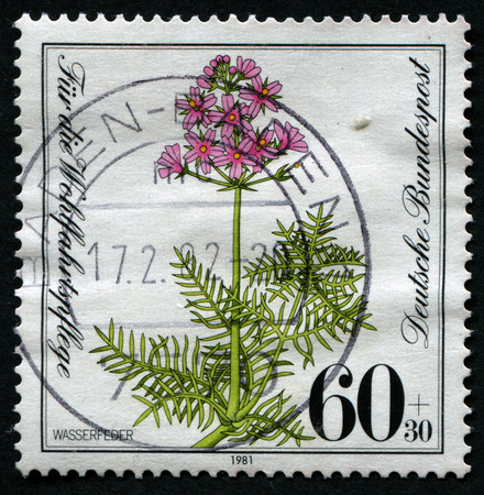 water spring: GERMANY- CIRCA 1981: stamp printed by Germany, shows water spring, circa 1981. Editorial