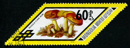 parallelogram: MONGOLIA - CIRCA 1978: A stamp printed in Mongolia shows Russula flava row, series, circa 1978 Editorial