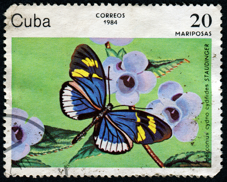 cuba butterfly: CUBA - CIRCA 1984: A stamp printed in Cuba, shows Cydno Longwing, Heliconius Cydno Cydnides, Butterfly, circa 1984 Editorial