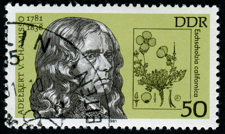 pseudonym: GERMANY - CIRCA 1981: A stamp printed in Germany shows Adelbert Chamisso ( 1981 - 1838 ) and eschscholzia californica, circa 1981 Editorial