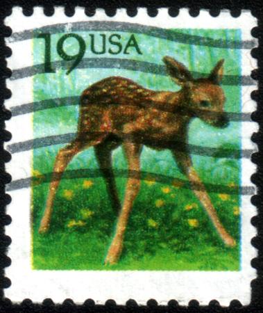 capreolus: UNITED STATES OF AMERICA - CIRCA 1991: A stamp printed in USA shows Roe Deer (Capreolus capreolus), circa 1991