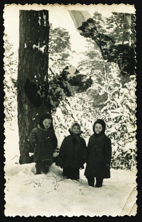 generational: USSR - CIRCA 1960s: An antique photo shows three small children in the winter forest near a tree, USSR, circa 1960s