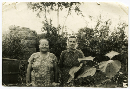 Ussr - CIRCA 1970s: An antique Black & White photo show two middle-aged woman in the garden