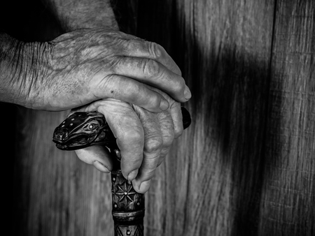 year of the snake: old hands with a cane