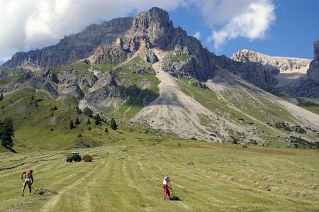 hard works on italian alps Stock Photo