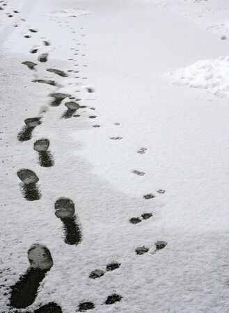 a nice view of footprints  photo