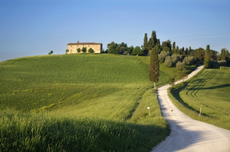 a nice view of landscape in tuscany photo