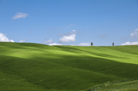 green fields and blue sky,Tuscany,Italy Stock Photo - 19941792
