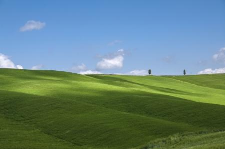 green fields and blue sky,Tuscany,Italy Stock Photo